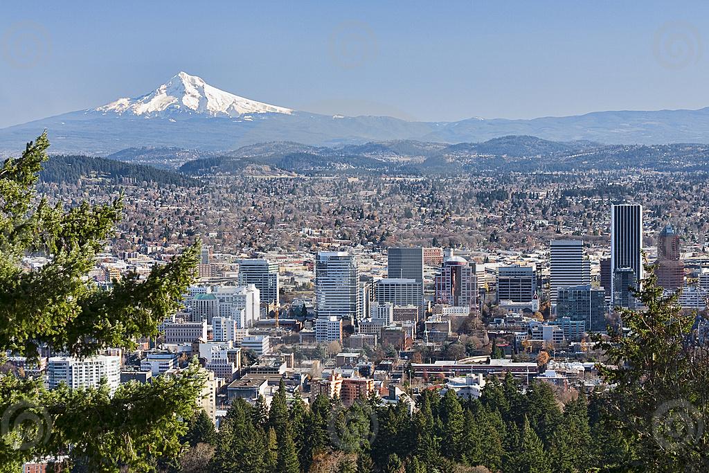 Portland OR 630